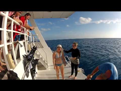 Atlanta Scuba Divers Enjoy Turks and Caicos