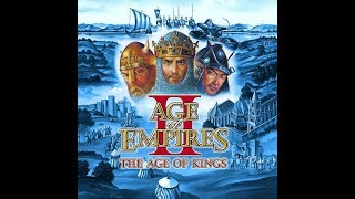Age of Empires II #2