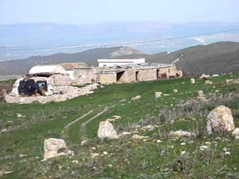 Ruines romaines de Kouchbatia. Djebel Gorra. Tunisie