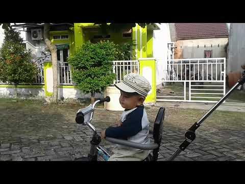 Sepeda stenlis roda 3 dibeli ayah..#babydull21092018