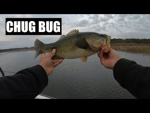 The Storm Chug Bug - A Good Bass Lure For Fall Fishing