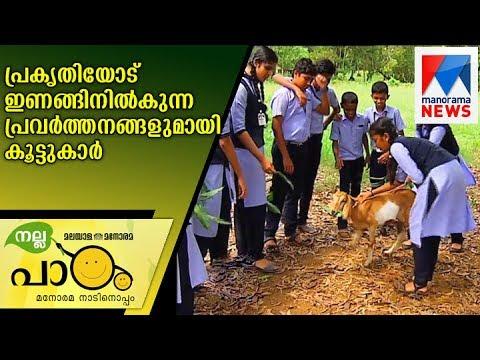 Nallapadam friends with nature friendly activities   Manorama News