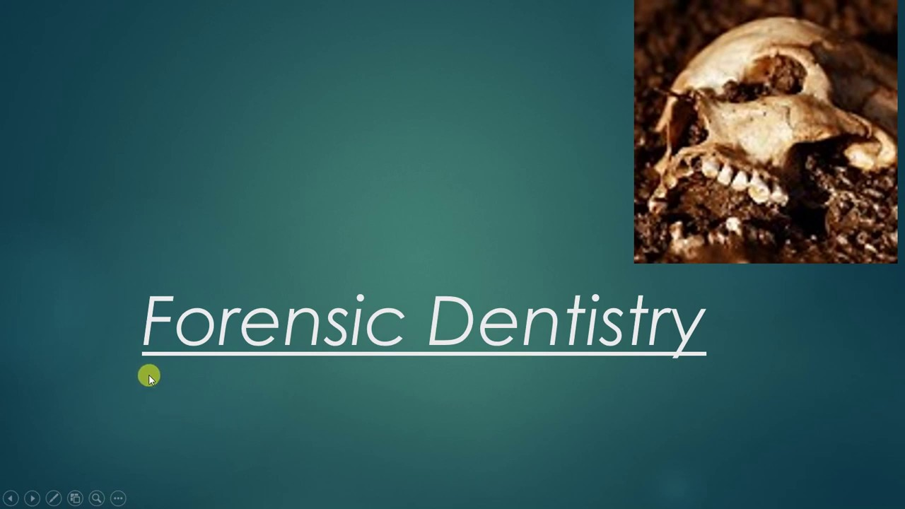 Scope Of Forensic Dentistry Youtube