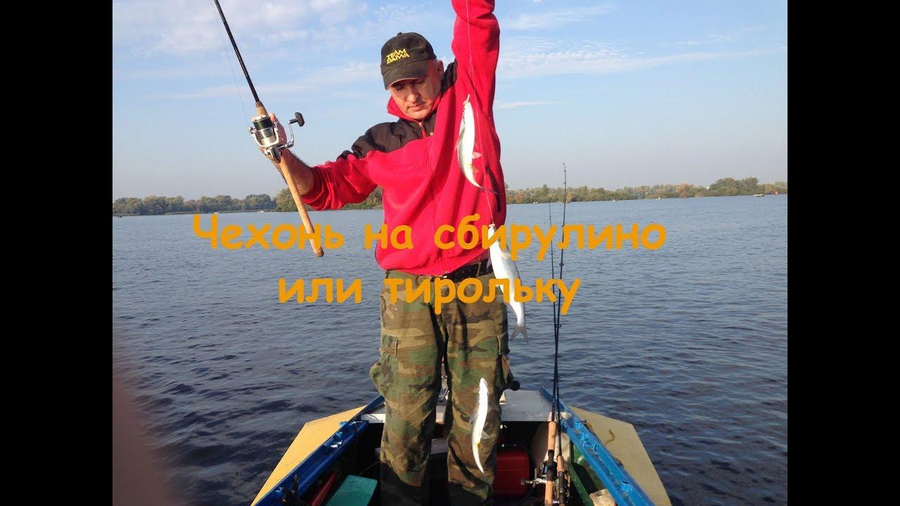 Интернет магазин shopster. Ua™ ➤ shopping ❤ trendy ❤ style ➤ купить детские ремни, пояса и подтяжки в украине ☕ наслаждайтесь уютом, а мы.