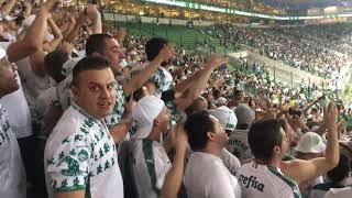 DE ARREPIAR: Eu sou Palmeiras sim senhor + gol do Deyverson contra Melgar - Libertadores 2019