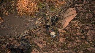 Path of Exile: Dragon Whelp Pet