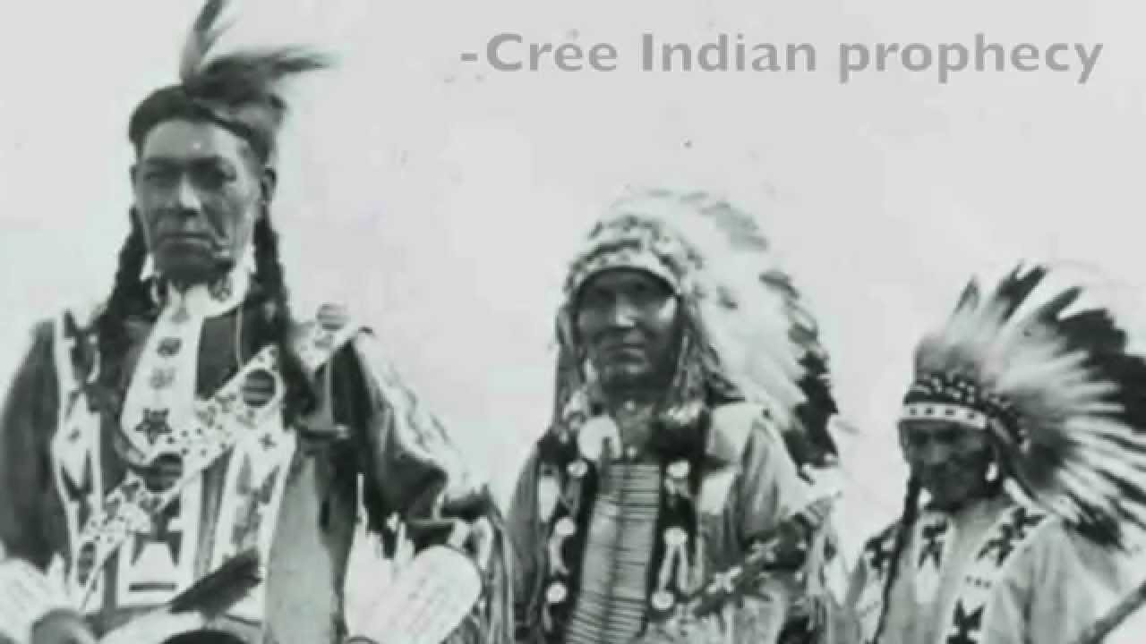 cree indians