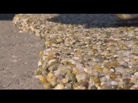 0c4d0c695b2 Смотреть видео Kamenný koberec PIEDRA v pořadu Rady ptáka Loskutáka s  Petrem Rychlým ze dne 25.04.2015 онлайн