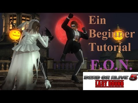 Ein Beginner Guide Tutorial (DOA5LR)