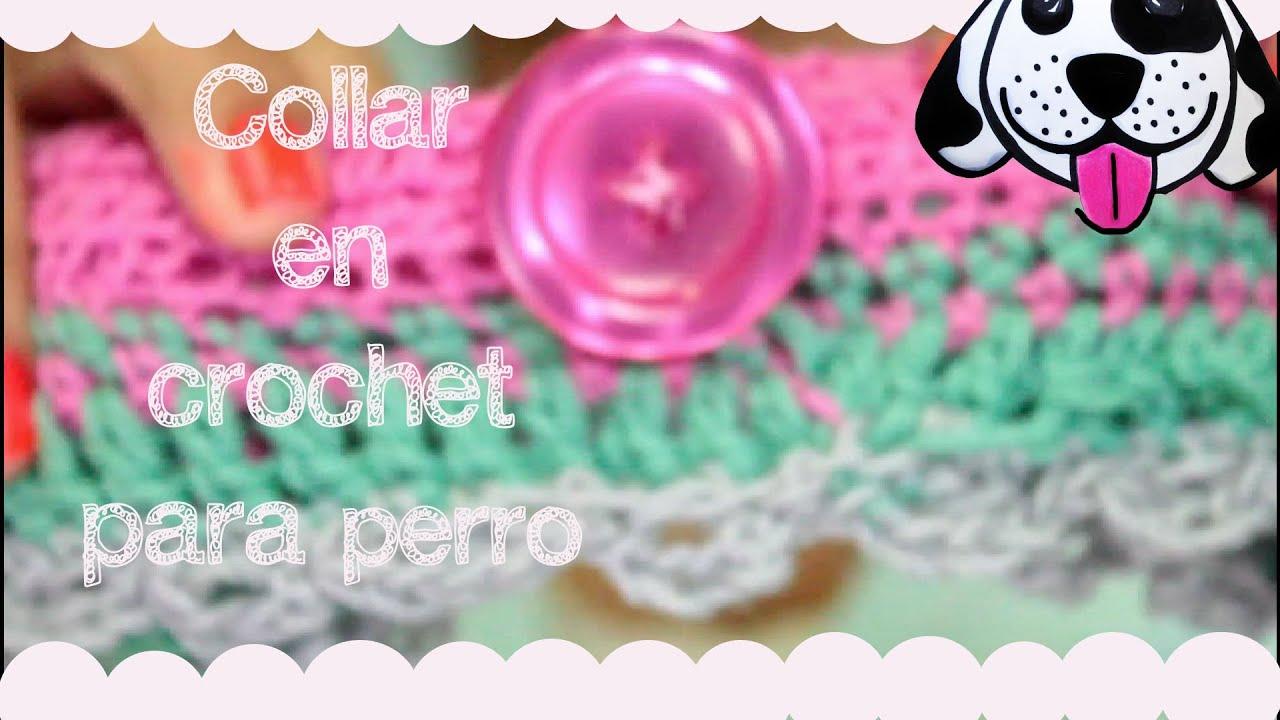 DIY Collar para Perro en Crochet - YouTube