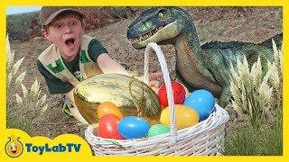 Golden Easter Egg Hunt! Dinosaur Surprise Toys Challenge & T-Rex Chase for Kids | ToyLabTV