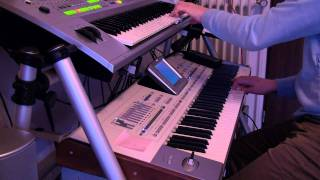 Ali Campbell (UB40) - Homely Girl Cover PA2x Tyros