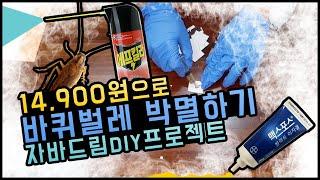 [바퀴벌레 퇴치법] 방역업체가 알려주는 바퀴벌레 완전 …