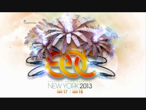 Gareth Emery - Live @ Electric Daisy Carnival (New York, 18.05.2013)