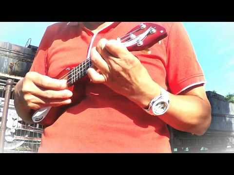 The Loco-Motion/Little Eva(ukulele)ロコモーション、ウクレレソロ