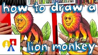 How To Draw A Golden Lion Monkey