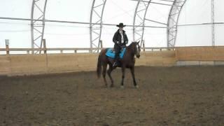 Mon cavalier 4