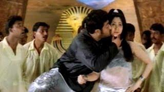 Simhadri Movie    Cheema Cheema Video Song    Jr NTR    Bhoomika Chawla    Ankitha