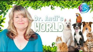 Romancing The Dog ~ Dr. Andi's World