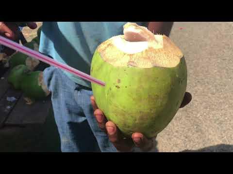 Travel Vlog From Fiji 2017!