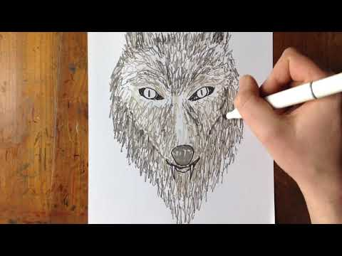 Sketching A Wolf With Grey Tone Pens No Reference