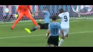 видео обзоры всех чемпионатов