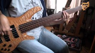 This is my electric bass play, copy of Camel's famous tune 'Echoes'...