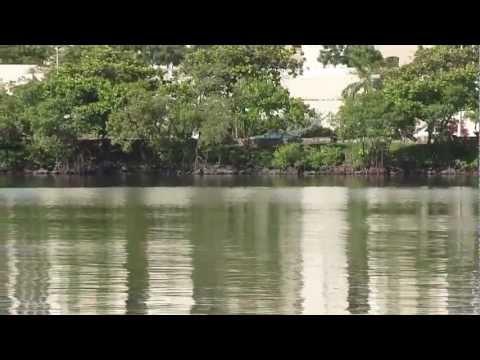 Laguna del Condado, Puerto Rico / Condado Lagoon, San Juan, Puerto Rico