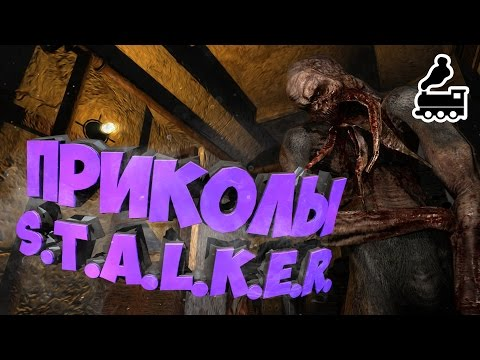 stalker Сталкер прикол -