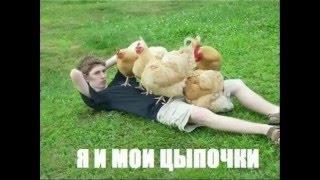 Смешные видео демотиваторы №19