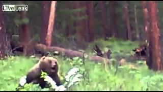 ロシア ハンター ライフル 熊 クマ ヒグマ グリズリー 速い 襲いかかってくる