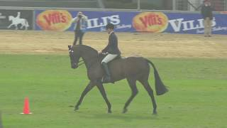 2018 Royal Adelaide Show Main Arena LIVE - Day 6