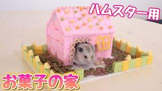 ハムスターが食べられる物だけでお菓子の家作ったら可愛かった!ぷんちゃんの誕生日!