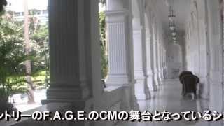 富司 純子さんがサントリーのF.A.G.E.のCMでシンガポールのラッフルズ・...