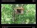 Rustic Bird Feeder Part 3 finish
