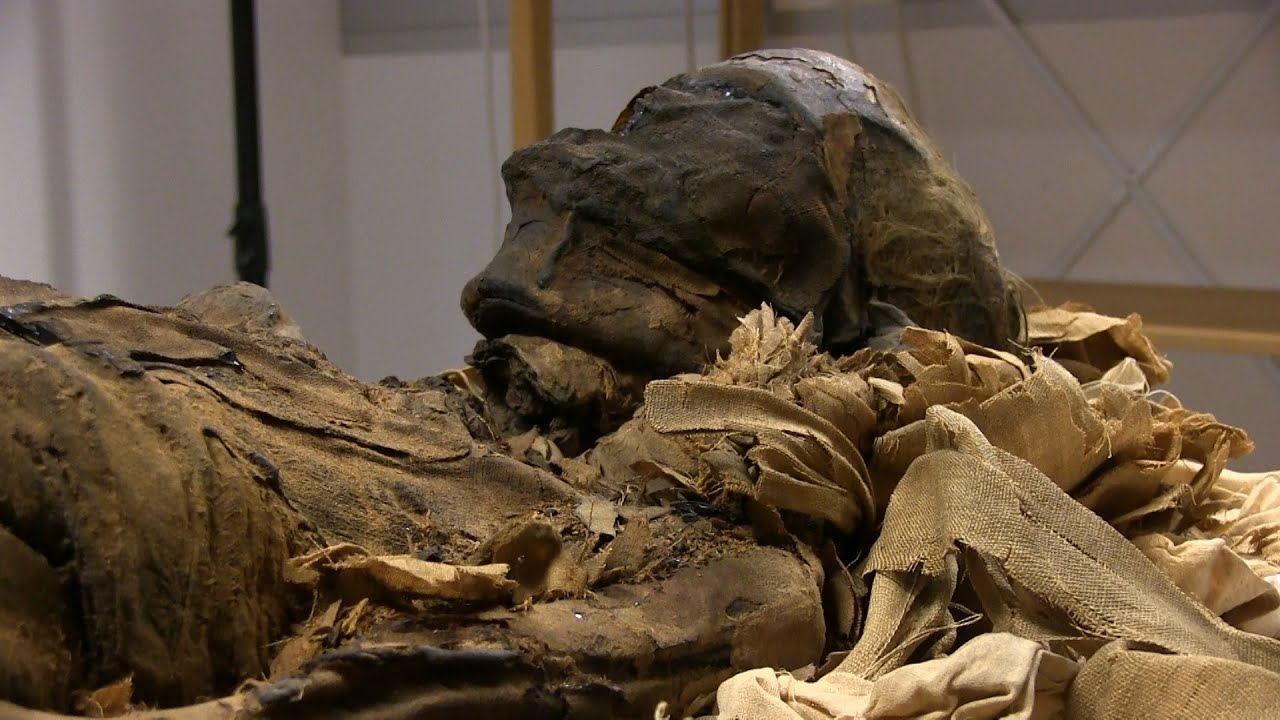 Dismutenibtes Den Egyptiske Mumien I Oslo Youtube