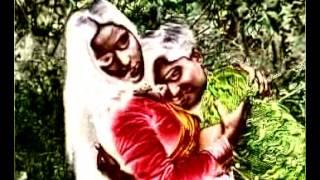 দেওরা খেলবি নাকি বল খালি মাঠ পইরা রইছে আমার সাথে চল