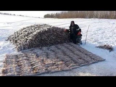 #3 Необычные случаи на рыбалке!