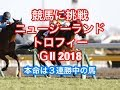 【競馬に挑戦】ニュージーランドトロフィー GⅡ 2018