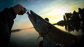 Ловля щуки на реке / Щука на джиг /Рыбалка летом на спиннинг
