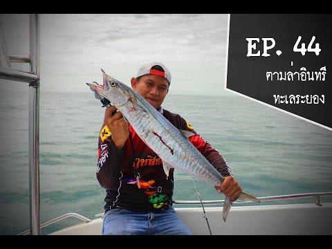 Fish Hunter EP : 44 ตกปลาทะเลระยอง ครั้งที่3 กับไต๋ก้อง ตามล่าหาอินทรี  Full HD