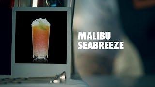 Malibu Seabreeze Drink Recipe - How To Mix