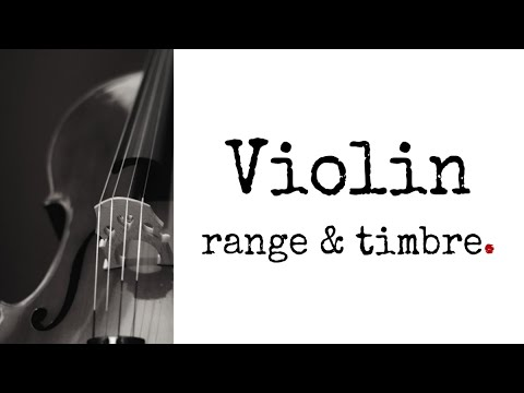 String Instruments - The Complete Guide - soundtrack academy