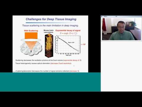 BRAIN Initiative Webinar #2: Chris Xu (Cornell) and Mark Schnitzer (Stanford)