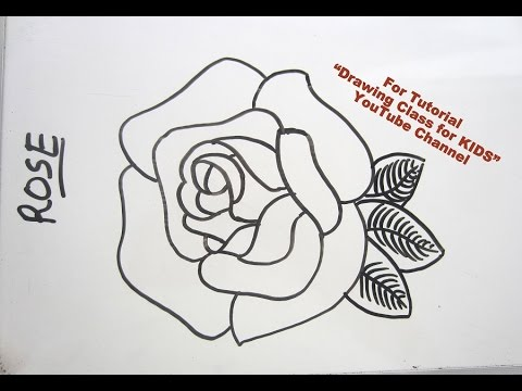 how to draw rose flower step by step