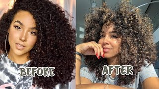 My Curly CUT and COLOR Transformation! New Hair, Who Dis?