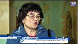 В Одессе судят живодеров Год назад два бультерьера растерзали небольшую уличную собаку  ТРК Репортёр