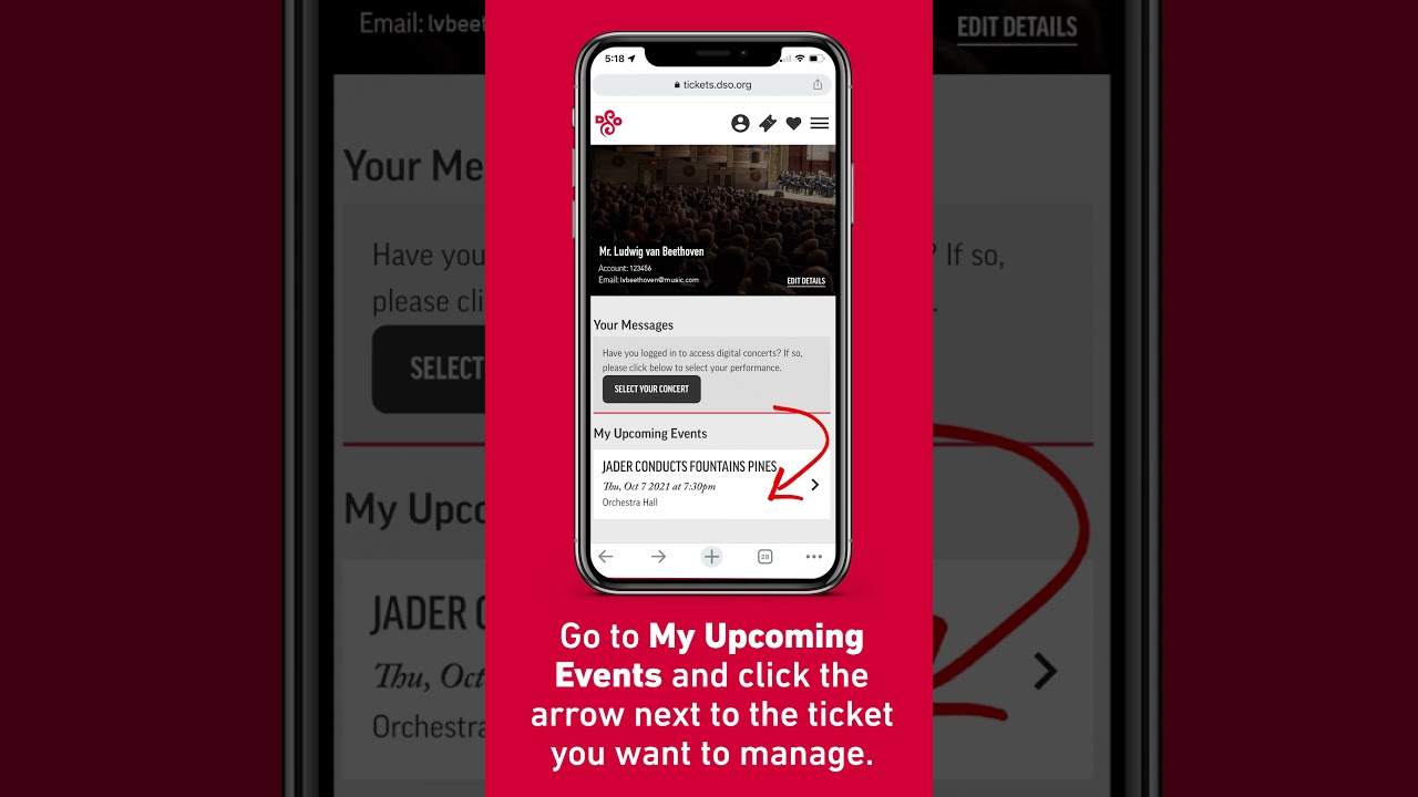 Artwork representing How to Access and Save Your E-Ticket Barcode