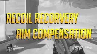 Overwatch Recoil Recovery Aim Compensation
