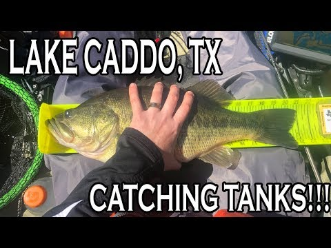 Kayak Bass Fishing Tournament - Lake Caddo, TX (ETXKF)